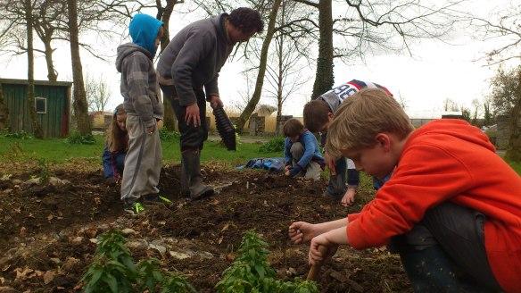 Gardening KWS